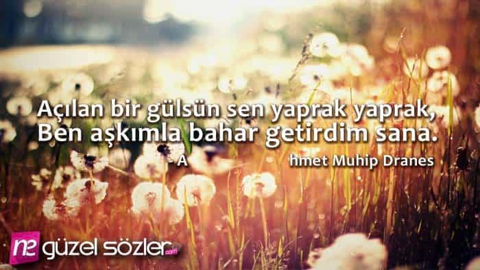 Ahmet Muhip Diranas Sözleri